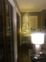 Photo Dec 18, 7 40 05 PM