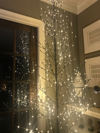 Photo Dec 18, 9 30 22 PM